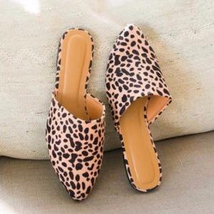 Shoes - DAKOTA Leopard Print Slip ons